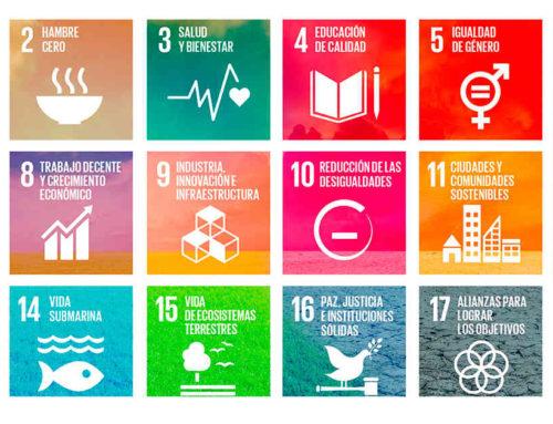 Banco de Buenas Prácticas de Mercociudades difundirá iniciativas locales que contribuyen a los ODS