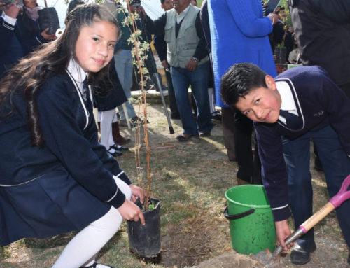 La Paz começa seu plano de florestação na ocasião do Dia da Árvore em Bolívia