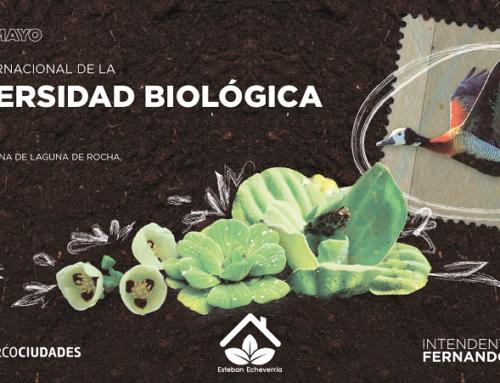 La pérdida de la biodiversidad es una pérdida para la humanidad