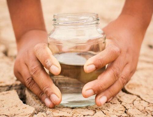 Mercociudades en el Día Mundial del Agua